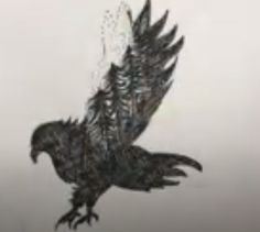 Bird Drawings, Cool Drawings, Drawing Skills, Eagles, Cool Stuff, Creative, Eagle, The Eagles