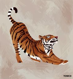 #art #painting #drawing #illustration #draw #tiger #stretch #cool