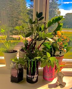 Cute Bedroom Decor, Teen Room Decor, Room Ideas Bedroom, My New Room, My Room, Monster Decorations, Monster Crafts, Recycle Cans, Room With Plants