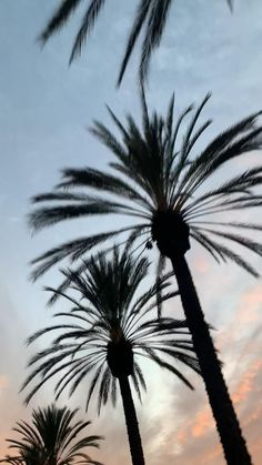 San Diego Hotels, San Diego Restaurants, La Jolla San Diego, San Diego Beach, California National Parks, Visit California, California Wallpaper, Moving Clouds, Nature Photography