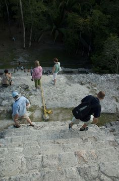 "Lamanai (from Lama'anayin, ""submerged crocodile"" in Yucatec Maya) is a Mesoamerican archaeological site"