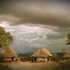 African Tree, African House, Zimbabwe Africa, Coloured People, Village People, Homeland, Bridges, Gates, Childhood Memories