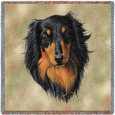 """Artwork by world renowned animal artist, Robert May. 54"""" width x 54"""" length Jacquard woven 100% cotton art tapestry. Not a print. Fringed. Made in the USA. Special Delivery/Handling: If not in stock, King Charles Dog, Dachshund Love, Brown Dachshund, Long Haired Dachshund, Dachshund Gifts, Dachshunds, Dog Portraits, Portrait Art, Weiner Dogs"""