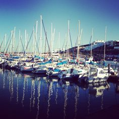 #westcoast #harbour #southafrica #yachts #morning