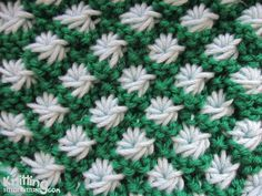 Video tutorial and written instructions for Aster flower pattern