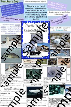 This set includes research information pages for 24 Arctic animals. It has been written to be accessible for early readers.  $