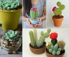You will love this collection of Crochet Cactus Patterns and we have all the most popular ideas with lots of free patterns and video tutorial included. Crochet Cactus Free Pattern, Vintage Crochet Patterns, Crochet Flower Patterns, Crochet Art, Crochet Crafts, Yarn Crafts, Crochet Flowers, Crochet Toys, Free Crochet