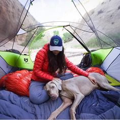 "Camping With Dogs® auf Instagram: ""Now this is the life. #campingwithdogs @captain_shark"""