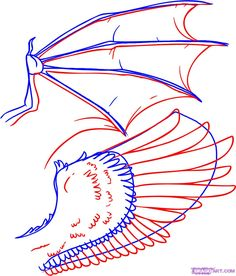 How to Draw Wings, Step by Step, Birds, Animals, FREE Online Drawing ...