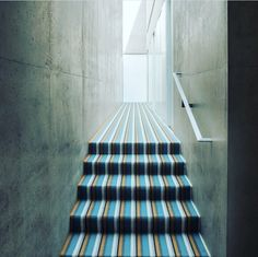 Bold striped carpet.  We installed this carpet for the new Crucial Trading hospitality brochure