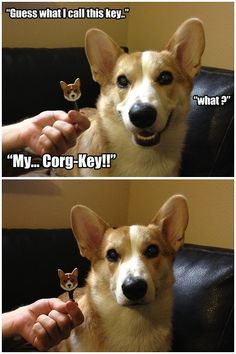 Guess what I call this key...  (Love it because their faces look JUST like this.)  :)