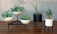 Case Study Bowl Plant Pot With Metal Legs, Large - Modernica