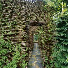Gardening Gone Wild: doorways