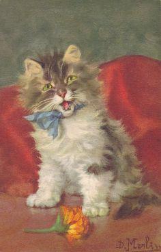 Cat w/ Flower , Artist D. Merlin , 10-20s