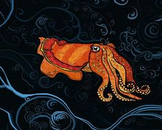 Floyd the Cuttlefish by Jennifer Leigh