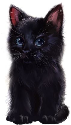Wallpaper Fofos Gatos Pretos 24 Ideas For 2019 - Wallpaper Quotes Cute Fluffy Kittens, Cute Cats And Kittens, Cool Cats, Kittens Cutest, Kitten Drawing, Black Cat Art, Black Cats, Cute Animal Drawings, Cute Birds