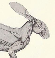Set of 2 Vintage Illustrated ANIMAL Anatomy by vintagegoodness