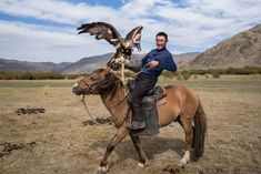 Nomads of Mongolia: An insight into their tribes, traditions and culture - January 27, 2018.  Mongolia, a country with just over three million people, is rich in history and culture. Landlocked between Russia and China, it is one of the few places on the planet where nomadic life still exists. Here is a look at the lives and culture of the people living here.  (Pictured) A man poses with his hunting eagle while riding a horse in the Altai Mountain Ranges.