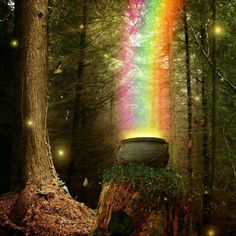 17 ideas for nature forest fairy tales New Job Congratulations, Bath And Body Perfume, Wicked Good, Les Gifs, Fairy Gifts, Forest Fairy, Gif Animé, Believe In Magic, Fantasy Landscape