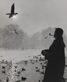 Where do you feel most calm? Wolfgang Suschitzky captured this moment in London's St James' Park, in World Photography Day, Book Photography, Street Photography, White Photography, William Hogarth, Aubrey Beardsley, The Great Fire, St James' Park, Documentary Photographers