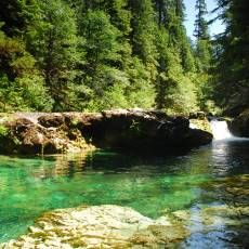 Opal Creek near salem