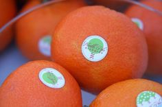 "free printable ""North Pole orchards"" labels for the oranges Santa leaves in stockings! :)"