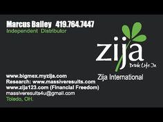 Zija Opportunity Presentation 2015  (new)