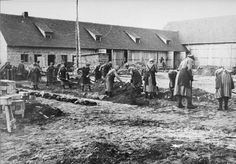 The History Place - Holocaust Timeline: Ravensbrueck Concentration Camp