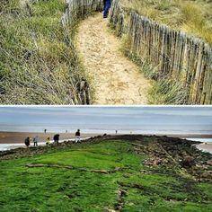 les dunes et la plage de houlgate, à marée basse.
