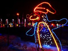 Calgary Zoo Lights in Calgary, Canada Zoo Lights, Canadian Travel, New West, Western Canada, Alberta Canada, Calgary, Cool Places To Visit, St Patricks Day, Christmas Holidays