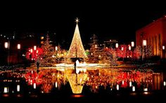 Image result for christmas night