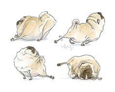 Four Pug Poses!                                                                                                                                                                                 More