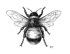 Black Ink Bee Tattoo Design