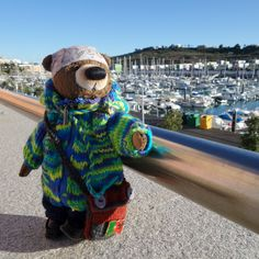 Bear in dreams of the yacht. My Friend, Bear, Dreams, History, Historia, Bears
