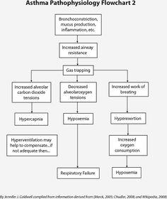pathophysiology charts | See Asthma Pathophysiology Flowcharts 1 and 2-