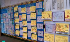 Science and Social Studies Wall (5th grade)