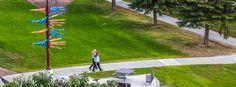 #campus #summer