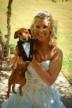 Married Dachshund