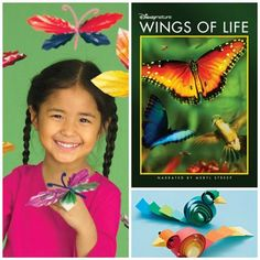 Wings of Life Activities