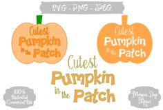 Cutest Pumpkin in the Patch SVG, Fall, Harvest, Pumpkin Cuttable Vector, Commercial Use, Instant Download, Silhouette Studio, SVG Cut File by MorganDayDesigns on Etsy