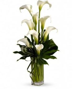 When it comes to sheer personality and charm, perhaps no other bloom can match the elegant calla lilies. In this original arrangement, callas is hown a stage of its own personality for that rare beauty of this calla liliy is known for. Church Flowers, Funeral Flowers, Love Flowers, Fresh Flowers, Silk Flowers, White Flowers, Beautiful Flowers, Wedding Flowers, Lilies Flowers