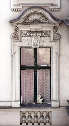 en la ventana by blancucha, via Flickr