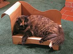 DIY Cardboard Cat Chaise With Downloadable Printable PDF Pattern - wondering if this can be adapted to jewelry display?