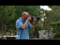 Panning Photography Tips – PictureCorrect