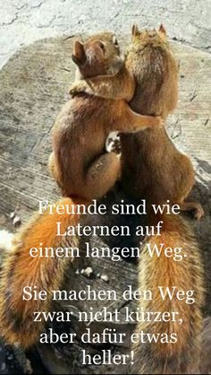 Freunde . . .