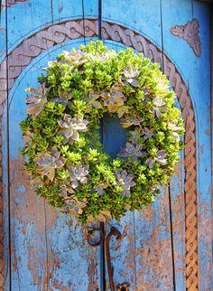 succulent wreath on blue