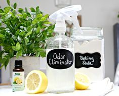 This DIY natural odor-eliminating furniture spray absorbs odors and leaves behind a clean, fresh scent! Essential Oils Room Spray, Lemon Essential Oils, Natural Essential Oils, Diy Furniture Spray, Easential Oils, Cleaning Spray, Cleaning Tips, Cleaning Solutions, Cleaning Supplies