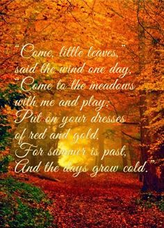 Little Leaves Harris Sisters GirlTalk: Come, Little Leaves Poem (includes link to fall foliage map)Harris Sisters GirlTalk: Come, Little Leaves Poem (includes link to fall foliage map)