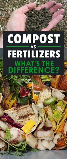 The difference between compost and fertilizer is surprising. Which one to use in your garden (if any) is important, so read on!