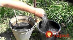 Po tomto tmavom koktejli prestanú mať škodcovia na vaše rastlinky chuť: Nestojí to nič a navyše ušetríte za drahé umelé hnojivá!